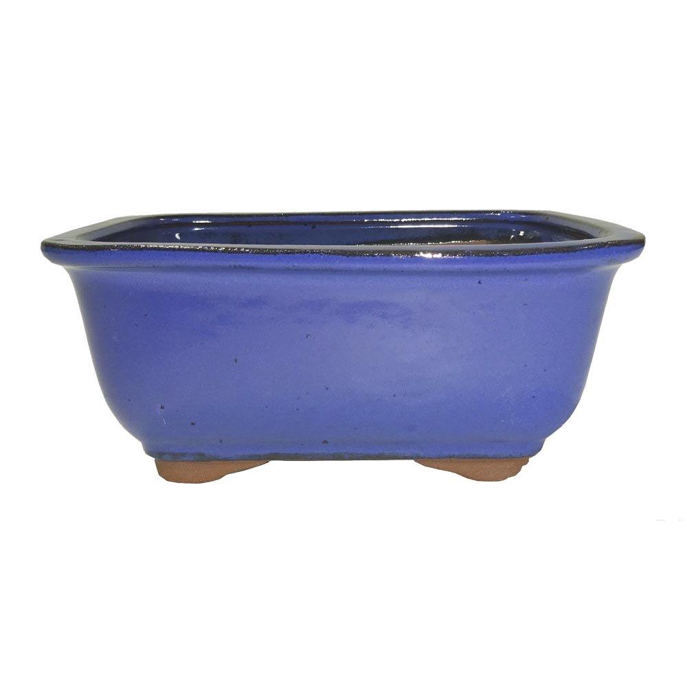 Brussel's Bonsai CGG91-6LB Rectangle Bonsai Glazed Ceramic Pot, 6'', Light Blue