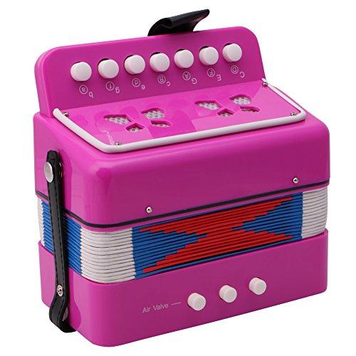 Pink Accordion - 4