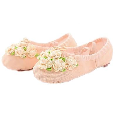 Amazon.com: Zapatillas de ballet para mujer, con flores, de ...