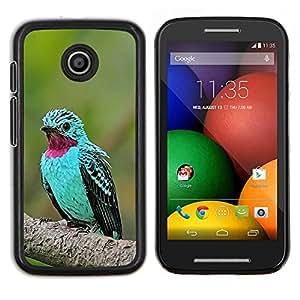 TECHCASE---Cubierta de la caja de protección para la piel dura ** Motorola Moto E ( 1st Generation ) ** --menta pájaro verde pluma púrpura tropical