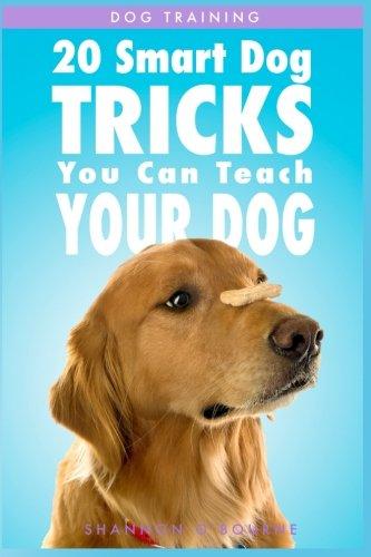 Dog Training: 20 Smart Dog Tricks You Can Teach Your Dog