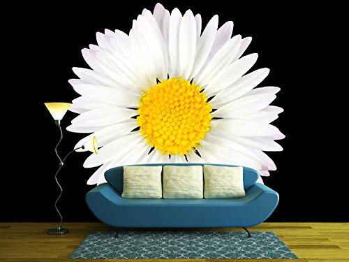 wall26 - Daisy Flower Isolated on Black Background - White with Yellow Center - Removable Wall Mural | Self-adhesive Large Wallpaper - 100x144 inches -