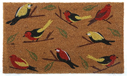 Welcome Birds on Branch 2 Doormat by Castle Mats, Size 18 x 30 inches, Non-Slip, Durable, Made Using Odor-Free Natural (Fall Front Door)