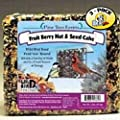 Pine Tree Fruit Berry Nut and Seed Cake, 2-Pound (Pack of 3)