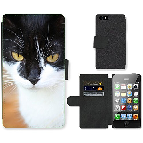 Just Phone Cases PU Leather Flip Custodia Protettiva Case Cover per // M00127370 Face Chasse Yeux de chat animaux féline // Apple iPhone 4 4S 4G