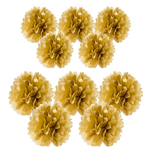 Light Coral Tulle Flower Decoration (10pc Gold Tissue paper pom poms flower ball decorations kit – Size 8 10 Inch)
