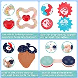 Nueplay Baby Rattle Teething Toys for Babies 6-12