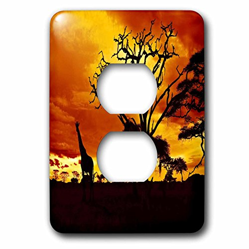 3dRose lsp_173293_6 African Giraffe On African Plains At Sunset, Animal Safari Africa - 2 Plug Outlet Cover by 3dRose