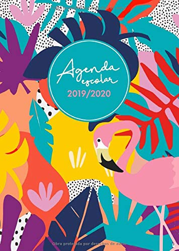 Agenda escolar 2019-2020: Planificador agenda 2019/2020 ...