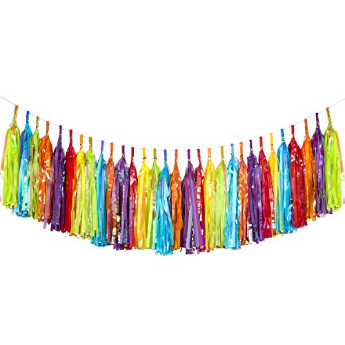 Blulu 30 Pieces Tassels Fiesta Tassel Banner Colorful Tassel Garland Tissue Paper and Metallic Foil Tassel Garland Banner for Birthday Wedding Party Favours Party Decorations, 6 Colors]()
