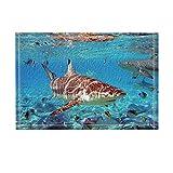 NYMB Sea Animal Decor, Marine Sharks with Fish in Ocean Bath Rugs, Non-Slip Doormat Floor Entryways Indoor Front Door Mat, Kids Bath Mat, 15.7x23.6in, Bathroom Accessories