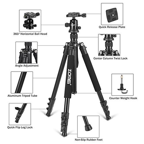 Zomei Q555 Travel Camera Tripod 62.5 Inch - Lightweight and Compact Aluminum Alloy Material for Outdoor Use - Great Smooth 360 Degree Ball Head as Panoramic Shooting-for Various Cameras Canon Nikon by ZoMei