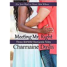 Meeting Mr. Right: Three BWWM Romantic Tales (She Just Had to Meet Him When Book 4)