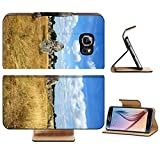Luxlady Premium Samsung Galaxy S6 Edge Flip Pu Leather Wallet Case IMAGE ID 5957293 Megalithic monuments in Carnac France