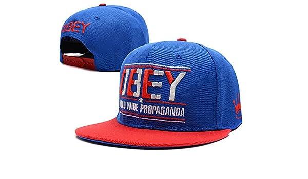 Hip Hop ajustable Obey Snapback Gorra de béisbol de Lu: Amazon.es ...