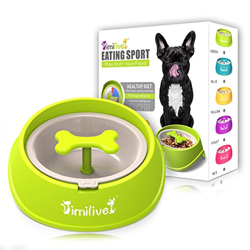 2017 New Design Anti Choke Pet Bowl Slow Eating Drink Bowls Healthy Prevent Choking Gluttony Obesity Puzzle Feeder Pet Dogs Cats (S, Green) -  Guang Dong,China