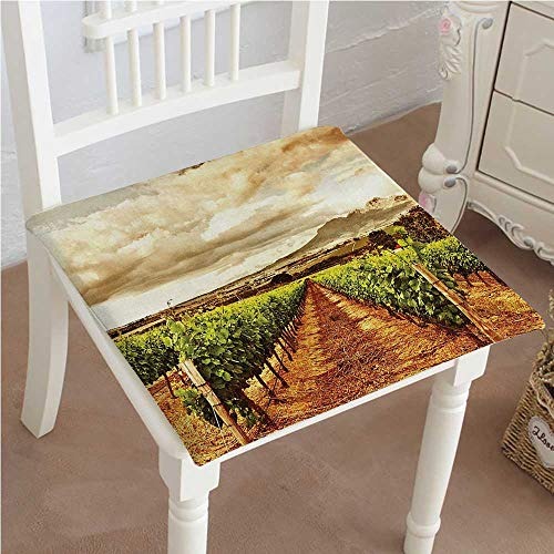 Chair Seat Pads Cushions Decor Grape Valley Clouds over Vineyard Natural Fruit Plantation in Autumn Garden Theme Square Car and Chair Cushion / Pad With Ties, Soft, For Indoors Or (Vineyard Wicker Furniture)