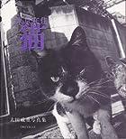 東京在住猫―太田威重写真集