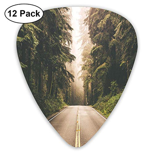 - Guitar Picks 12-Pack,Straight Highway In Northern California United States Nature Photography