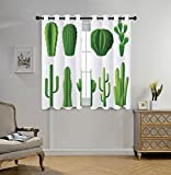 oobon Stylish Window Curtains,Cactus Decor,Print Cartoon like Image Hot Mexican Desert Plant Cactus Types with Spikes Image,Green,2 Panel Set Window Drapes,for Living Room Bedroom Kitchen Cafe
