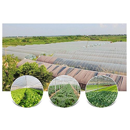 Agfabric 2.4Mil Plastic Covering Clear Polyethylene Greenhouse Film UV Resistant for Grow Tunnel and Garden Hoop, Plant Cover&Frost Blanket for Season Extension, 12x75ft by Agfabric