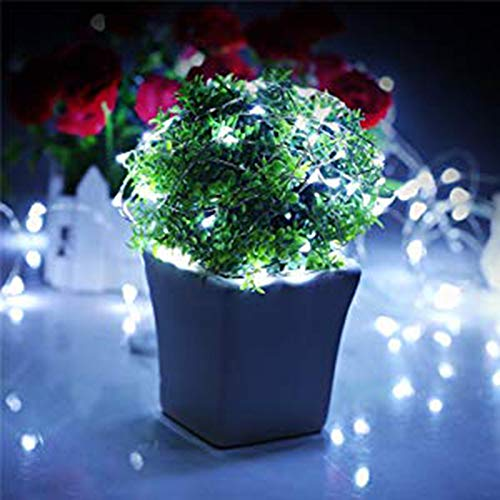 DZT1968 1 Pc 30mx300 Led String Lights Decorative Bedroom Garden Yard Parties Wedding Copper Wire String Lights Dimmable Kids Room Indoor and Outdoor Decor (White)