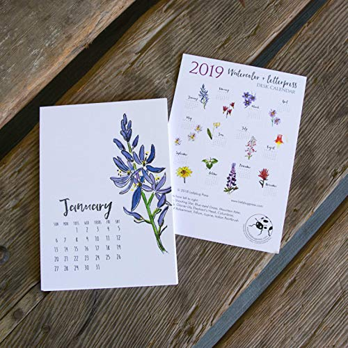 2019 Watercolor and Letterpress Wildflower Desk Calendar, hand drawn, letterpress printed eco friendly -