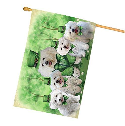 St. Patricks Day Irish Family Portrait Bichon Frises Dog House Flag FLG49166