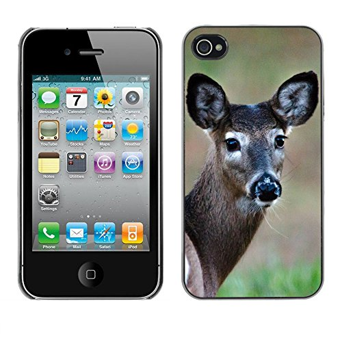 Premio Sottile Slim Cassa Custodia Case Cover Shell // F00006713 cerf // Apple iPhone 4 4S 4G