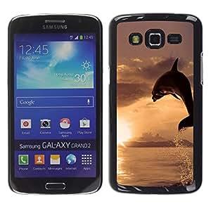 Caucho caso de Shell duro de la cubierta de accesorios de protección BY RAYDREAMMM - Samsung Galaxy Grand 2 - Dolphin Sol