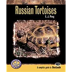 Tfh Nylabone STFCH802 Herp Care Russian Tortoises and Other Testudo