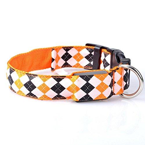 Ninasill Clearance ! Pet Collar, Hot Cute Pet Dog LED Glow L