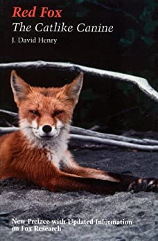 Red Fox: The Catlike Canine by [Henry, J. David]