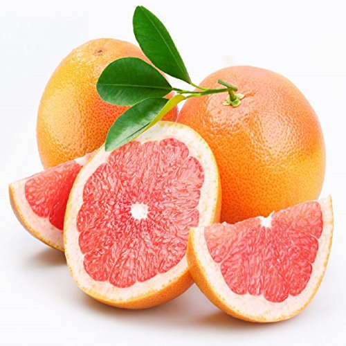 PINK GRAPEFRUIT FRAGRANCE OIL - 4 OZ - FOR CANDLE & SOAP MAKING BY VIRGINIA CANDLE SUPPLY - FREE S&H IN USA - Grapefruit Fragrance Oil