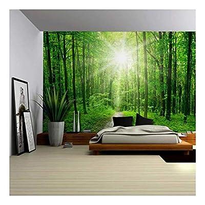 Self-Adhesive Wallpaper Large Wall Mural Series (100