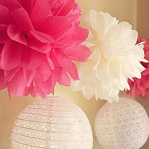 XWYL Paper Lanterns Paper Flowers Pom Poms Multi-Colors Tissue Paper Craft Flowers Party Decorations