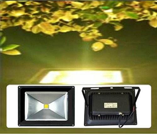 Landscape Security Lighting in US - 6