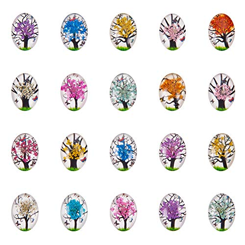 PandaHall Elite 20 Pcs 5 Colors Dried Flowers Half Oval Flat Back Flower Glass Dome Tile Cabochon 25x18x5.5mm for Photo Pendant Craft DIY Jewelry Making