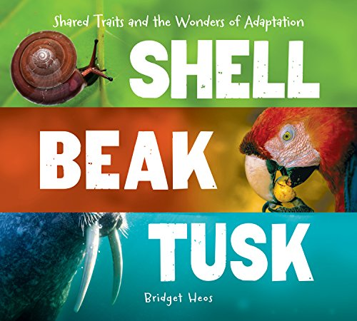 (Shell, Beak, Tusk: Shared Traits and the Wonders of Adaptation)