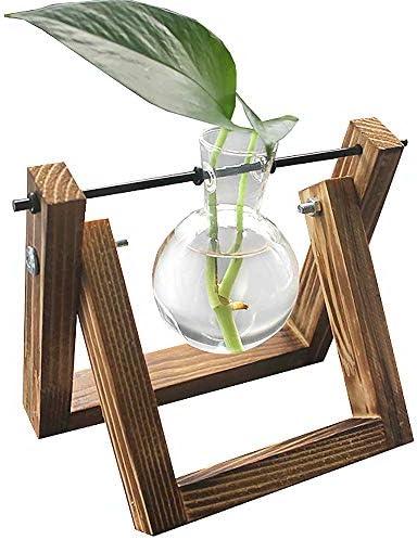 DEDC Desktop Clear Glass Planter Lamp Vaas met Retro Massief Houten Stand Decoratieve Plant Terrarium voor Hydrocultuur Planten Thuis Tuin Bruiloft Decor 1 Vaas