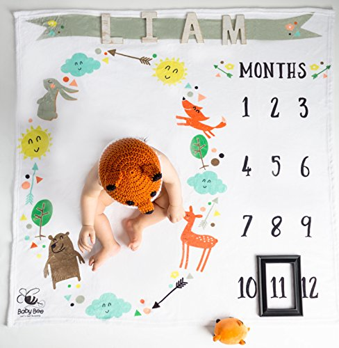Baby Bee Monthly Milestone Swaddling Blanket Double Thick Large Soft 100% Premium Quality Circle Unisex Gender Neutral Fleece Nature Animal Arrows Bear Deer Fox Photo Backdrop With Frame Marker (Baby Bear Photos)