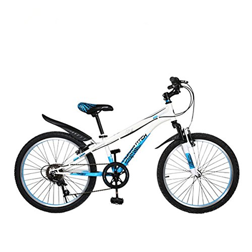 Cyfie ホーク 子供用自転車 22インチ 6段変速 スタンド型 泥よけ付 簡単に安装 男の子 女の子 小学生 ジュニアマウンテンバイク スポーティサドル