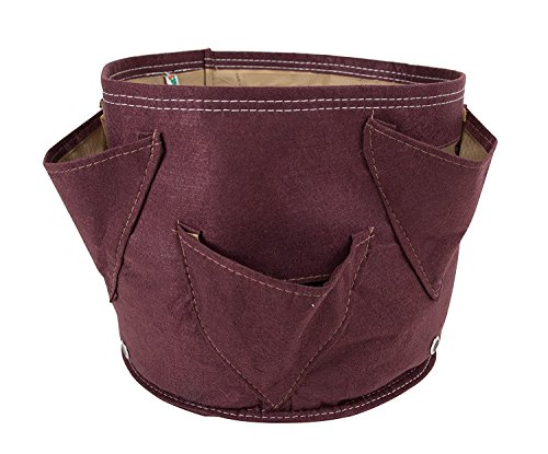 Bloembagz Fabric Big Herb Planter Bag (0.27 kg, Chocolate)