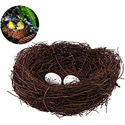 JiaUfmi Natural Vine Bird Nest With 2 Eggs Handmade Bird Nest Decorative Ornament for Wedding Favors, Party Favors, Florals or Baby Showers, Bird Nest Outer Diameter is Approx 5.9 inches