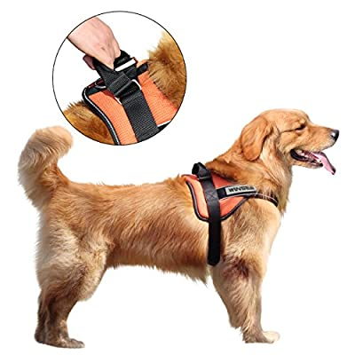 Dog Harness, WINSEE No-Pull Dog Leash Harness Reflective Adjustable Harness with Handle for Dogs (Orange)