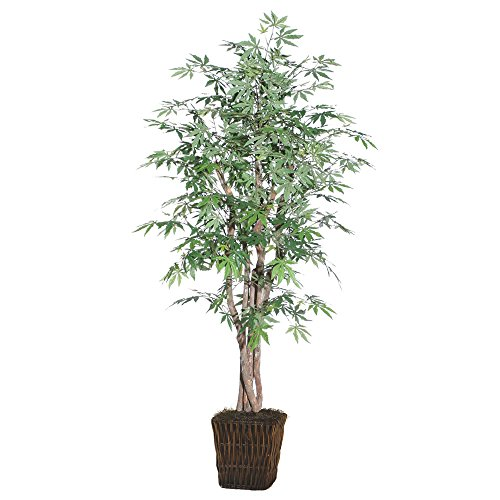 Vickerman TEX1860-0414 Japanese Maple Executive Tree, 6' (Tree Artificial Japanese Maple)