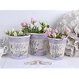 3er Set Blumenbehälter Pflanzbehälter Blumentöpfe Lavendel Provence