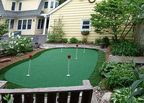 StarPro 15ft x 28ft 5-Hole Professional Practice Putting Green