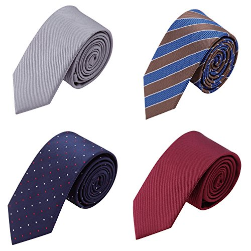 AUSKY 4 Packs Fashion Skinny Neckties for Mens Boys in Different ()