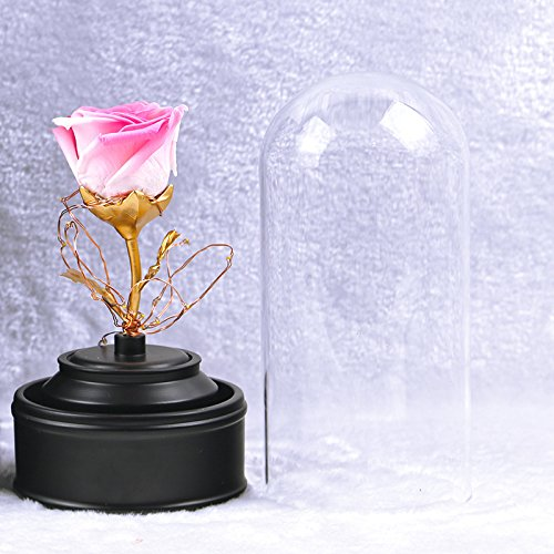 Preserved Fresh Flower, Live Forever Rose, Enchanted Rose,Natural Eternal Life Rose in Glass Dome Cover with Gift Box for Valentine's Day, Mother's Day, Anniversary, Birthday (Gradient pink) by Baobab's wish